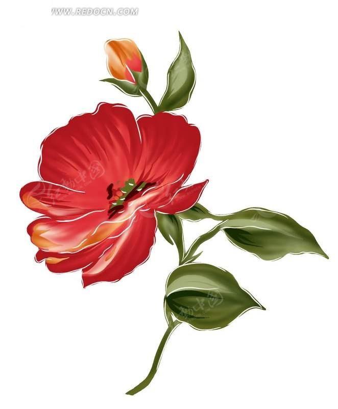 手绘美丽水彩花卉psd分层素材