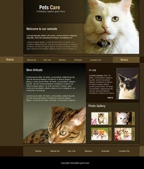 宠物医院网站模板