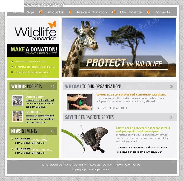 欧美 国外网页 版式设计 国外网站设计 首页设计 网页素材  动物网页