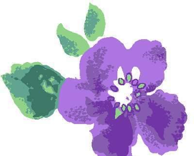 手绘涂鸦紫色五瓣花与叶子
