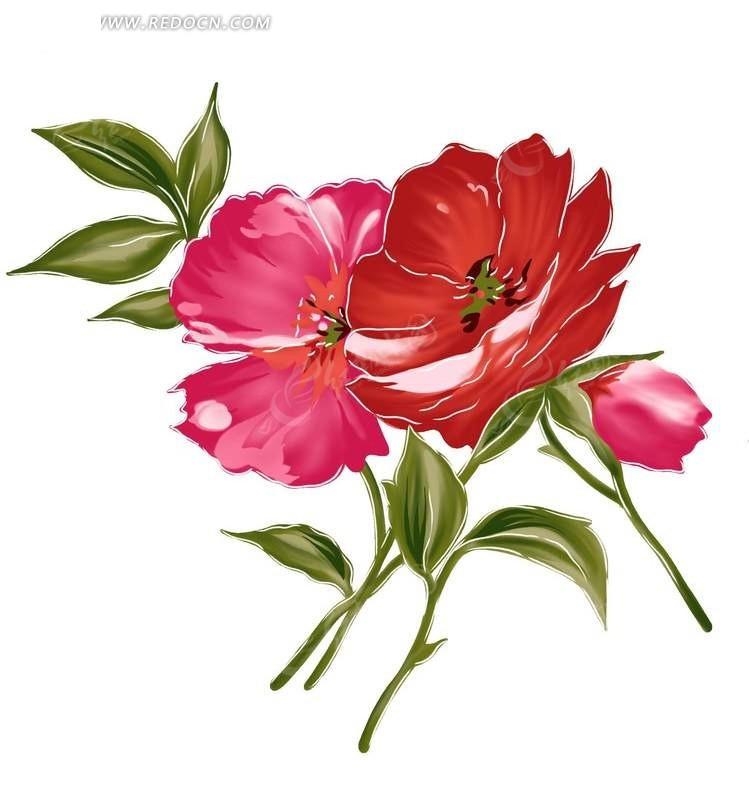手绘红色花朵与花蕾叶子