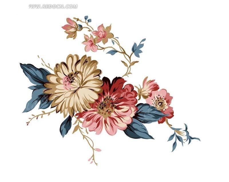 手绘 菊花 花束 花朵 花卉 psd素材 花卉psd素材 分层素材 白色背景