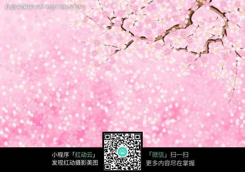 粉色桃花小鸟手绘图片