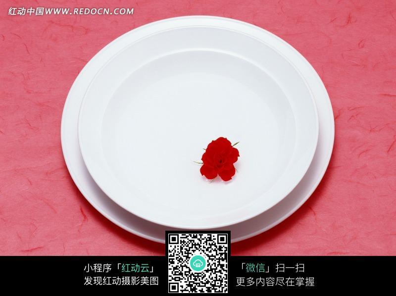 红色背景上白色的盘子素材图片