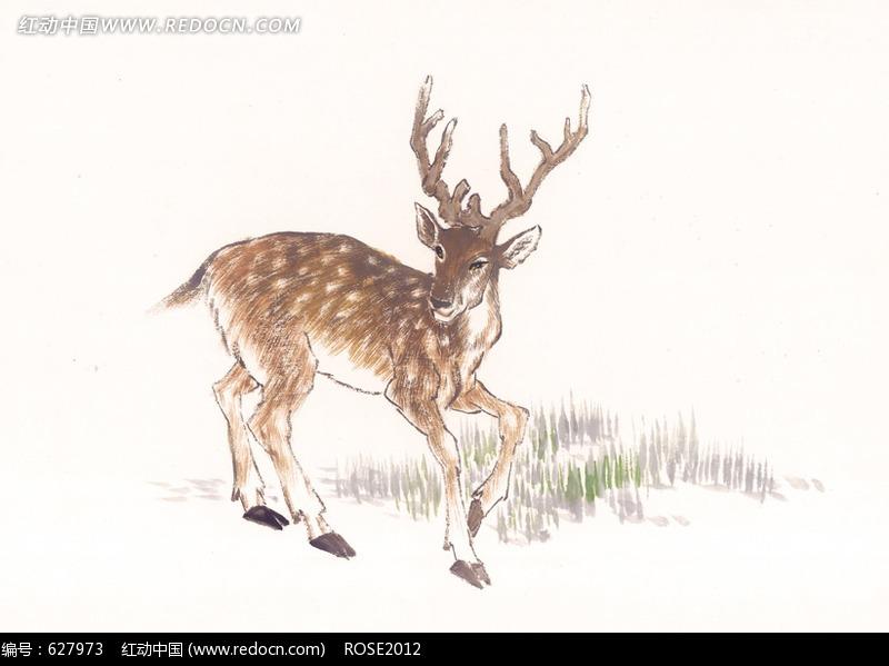 免费素材 图片素材 生物世界 其他生物 中国写意动物-站立的梅花鹿