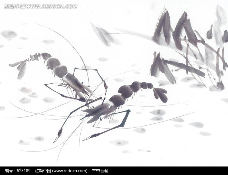 中国写意动物-两条正在打架的虾