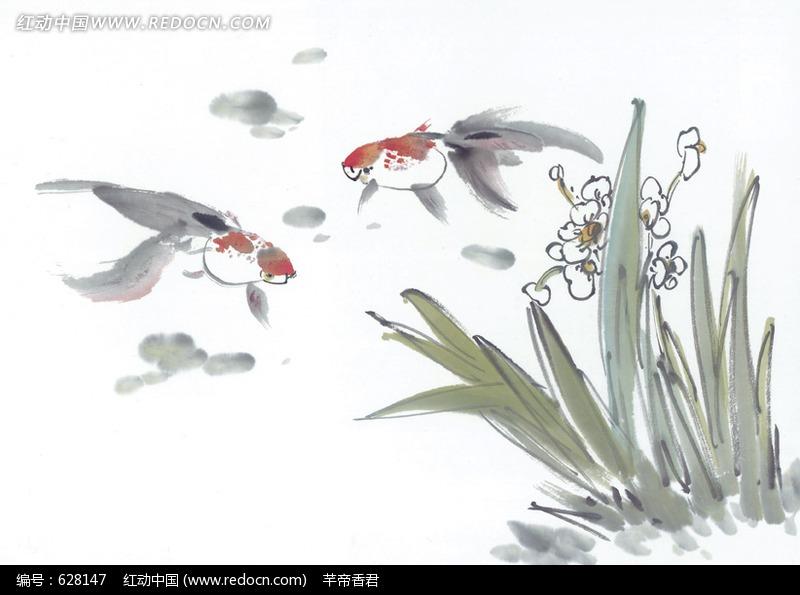 水草旁的金鱼图片_水中动物图片