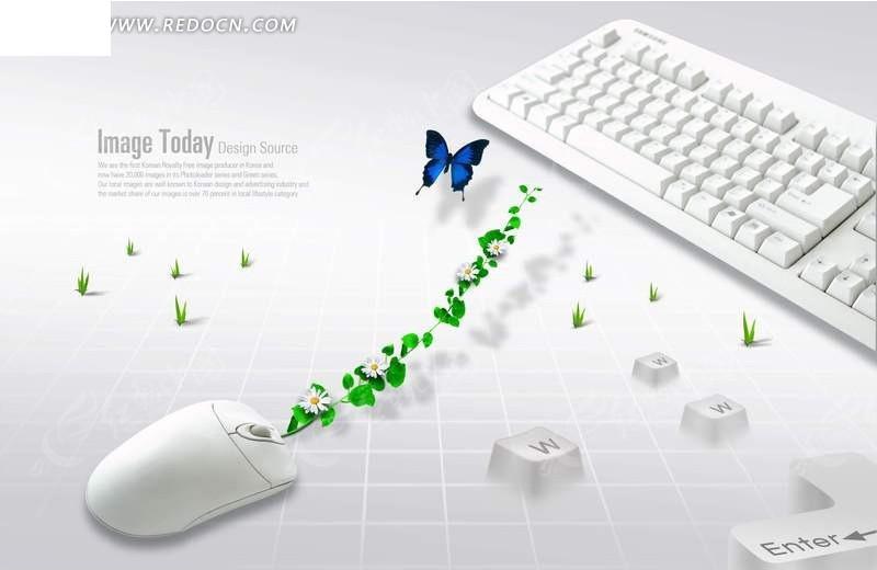键盘鼠标蝴蝶图片