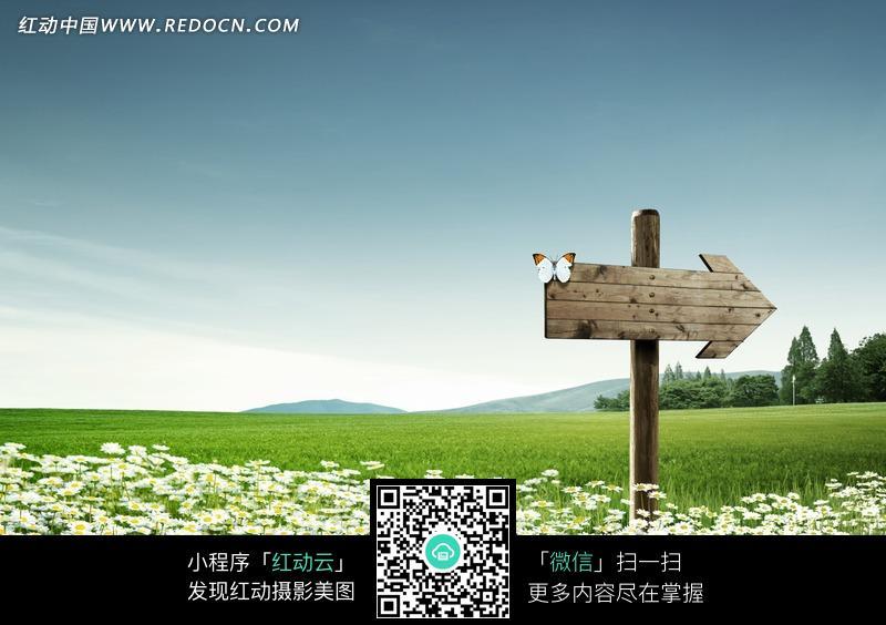 免费素材 图片素材 自然风光 自然风景 野外的木制路标图案  请您分享