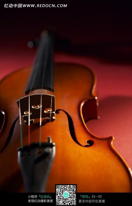 小提琴琴弦特写图片图片