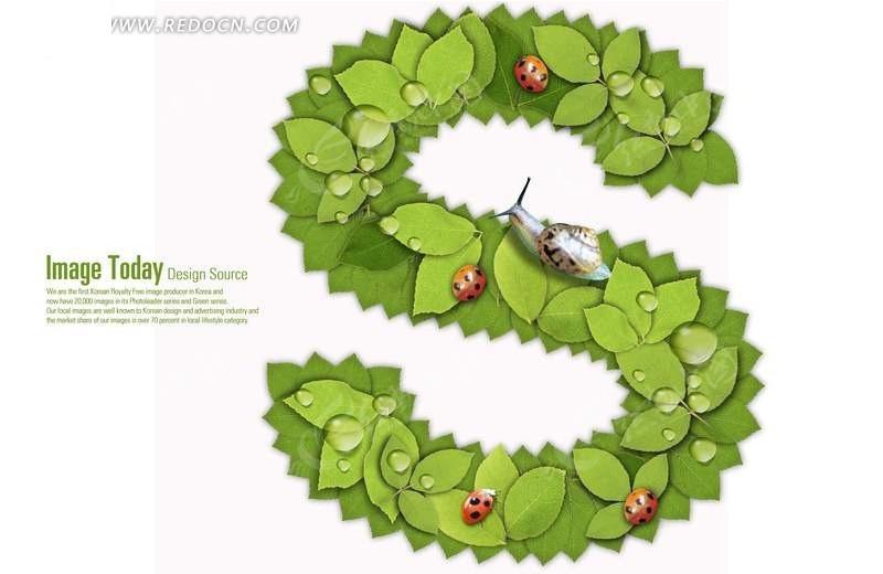 树叶字母s字形图片