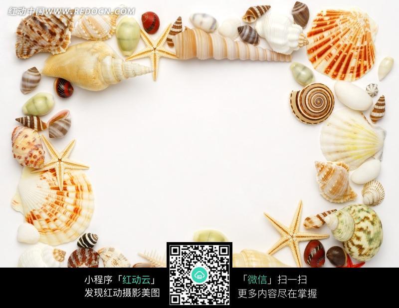 海螺贝壳海星围成的边框图案