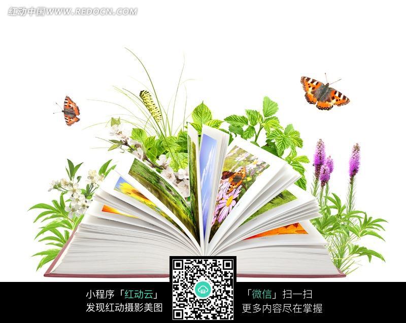 花卉植物类书籍图片