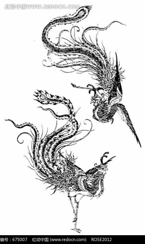 站立的丹顶鹤的简笔画图片