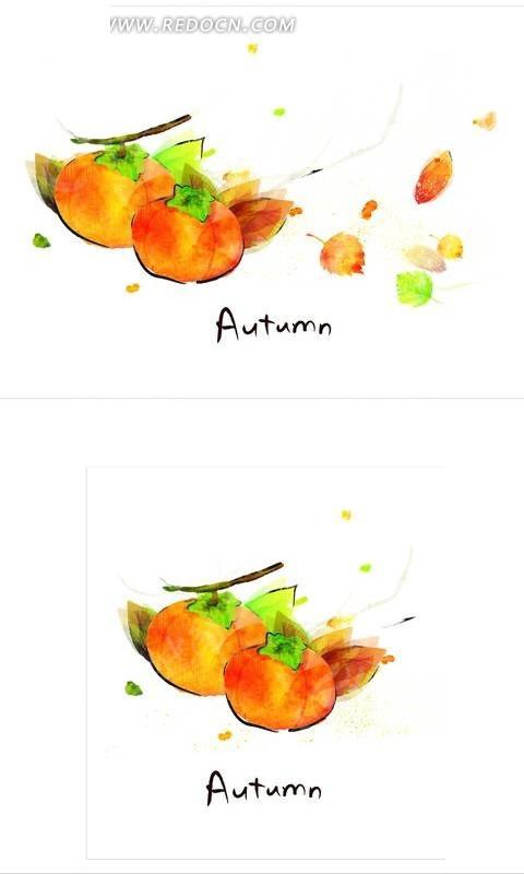 秋天手绘柿子图片