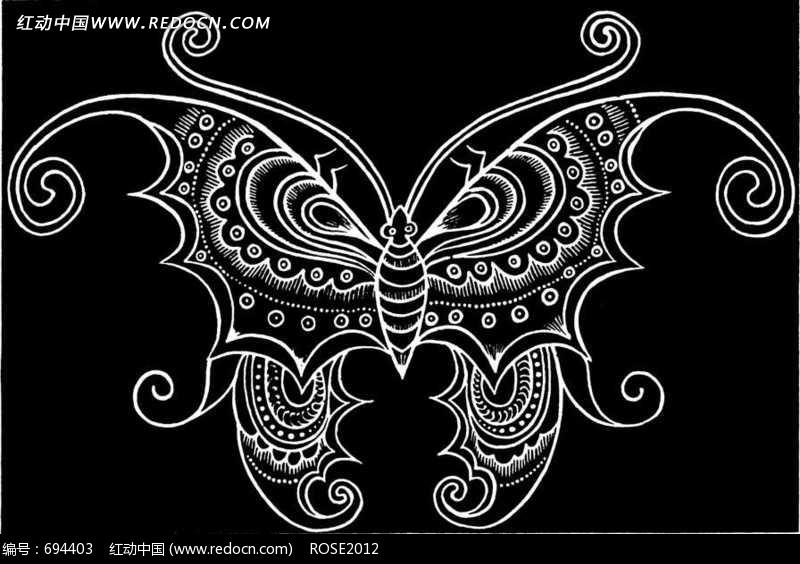 黑白装饰线条画蝴蝶图片