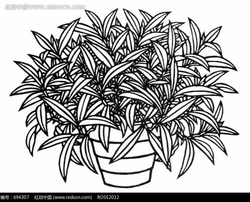 披针形叶子 植物 盆栽  花纹 图案 装饰 黑白 精美 花纹素材 花边