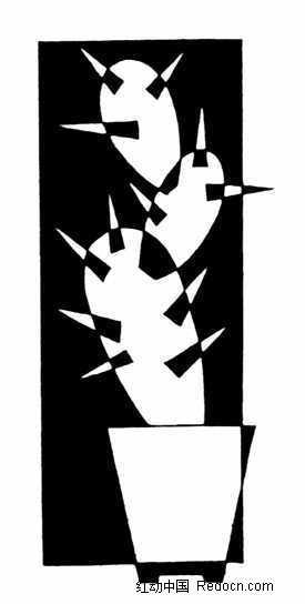 盆栽仙人掌黑白图案图片