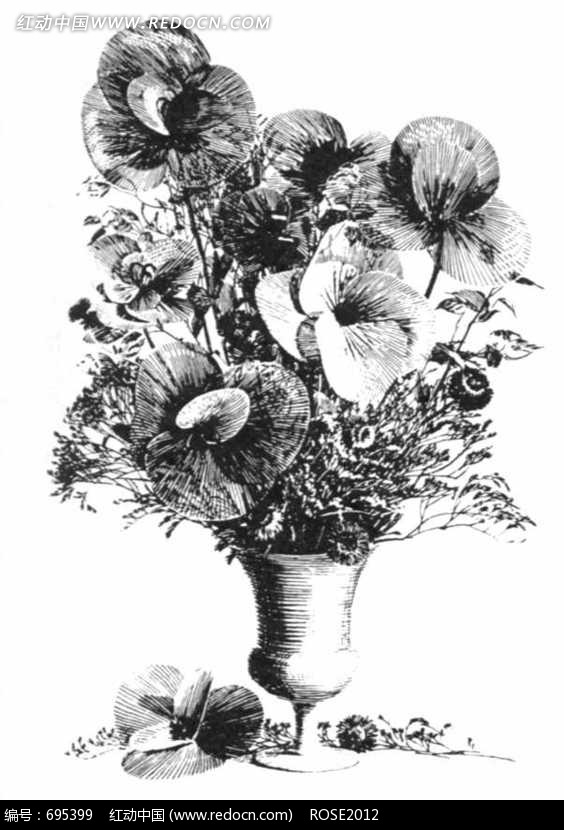 黑白写实花卉素描