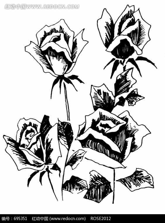 玫瑰花黑白图案