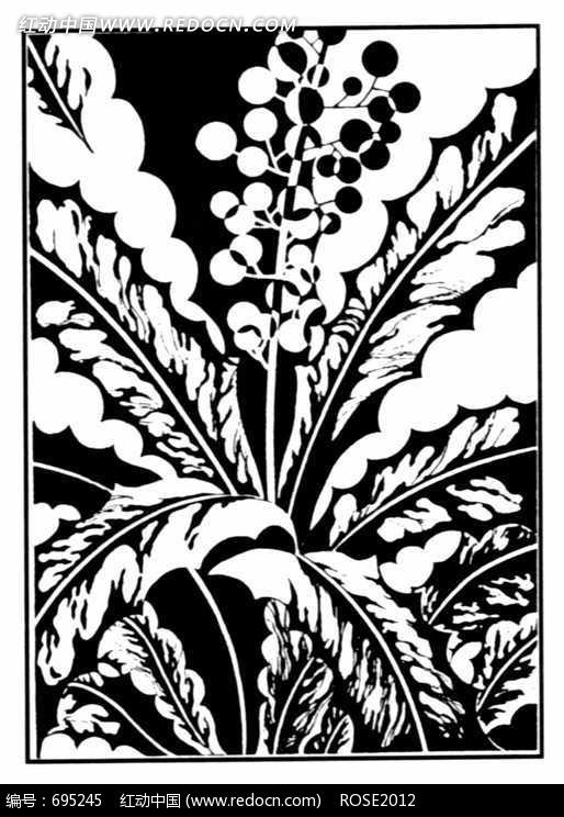 黑白抽象植物花纹图案