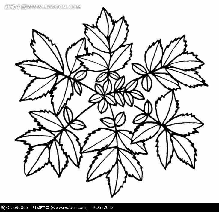 您当前访问素材主题是简洁的线条植物图案,编号是696065,文件格式jpg