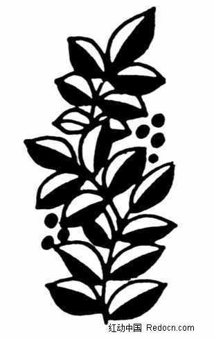 一张黑白植物图案素材
