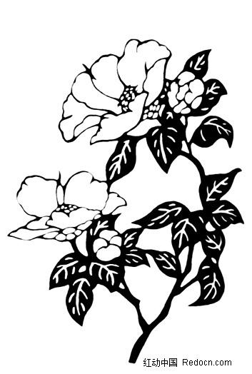 手绘线描牡丹花图片