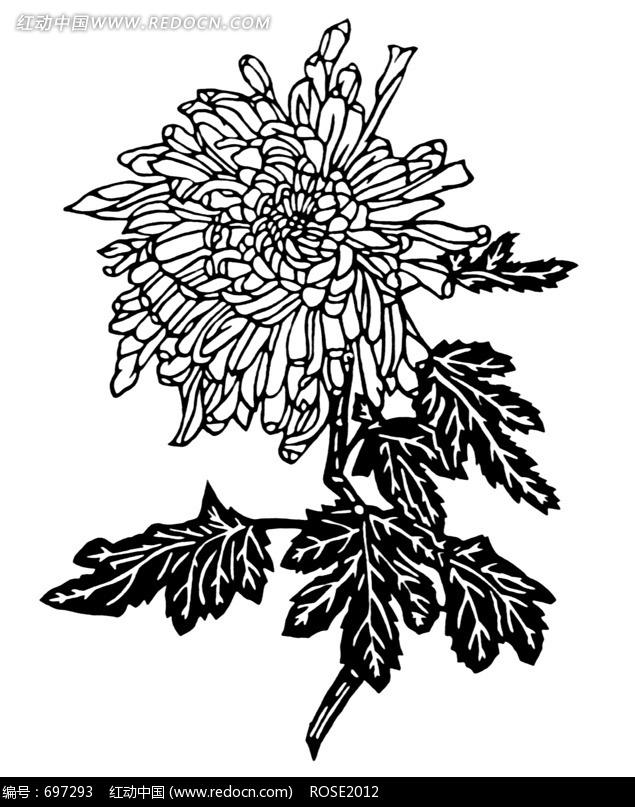 牡丹花黑白木刻