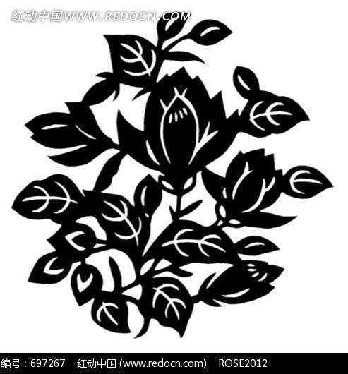 黑白图案 花卉 叶子 花卉素材 图案花朵 装饰 艺术 白色背景 花纹