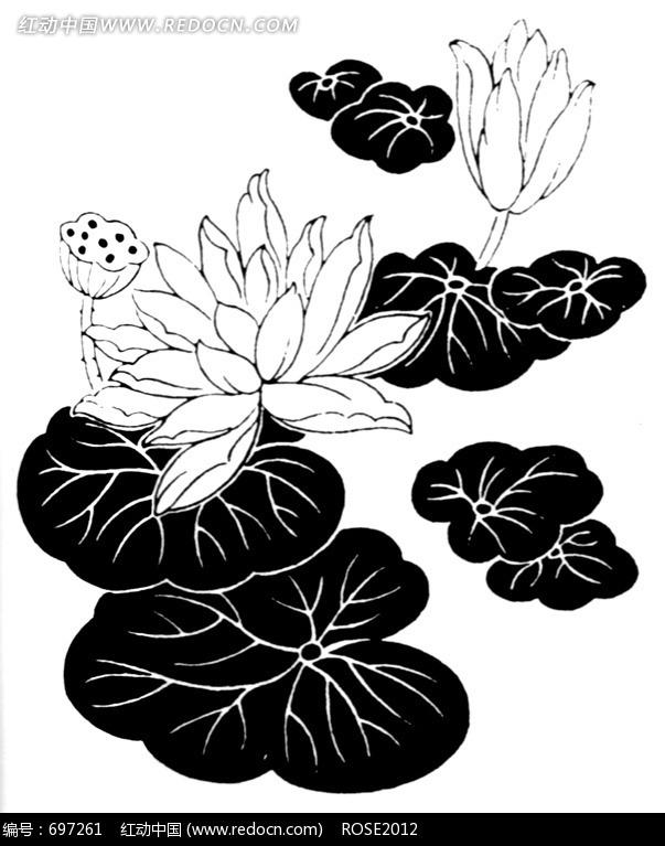 荷花荷叶黑白画