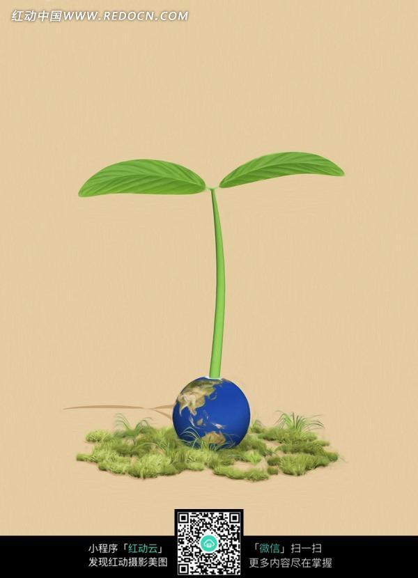 在地球上发芽的巨型小苗图片