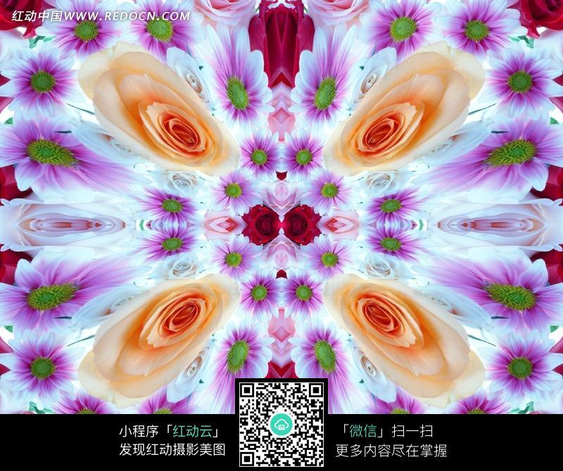 变形的非洲菊和黄色玫瑰构成的图案图片