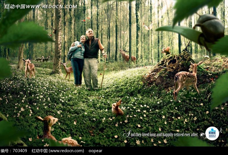 树林中贴近自然的老夫妻和鹿群图片