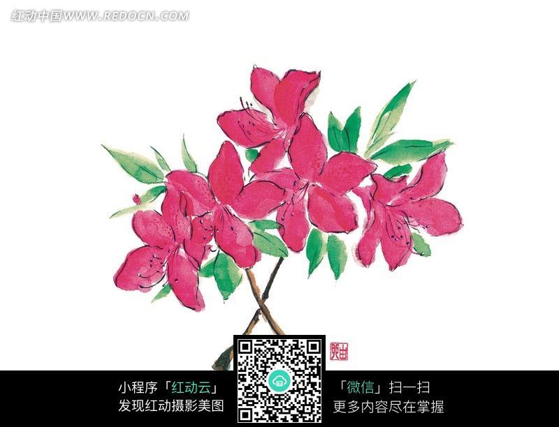 手绘红桃花与叶子图片