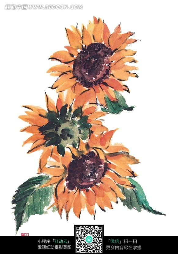 彩铅太阳花