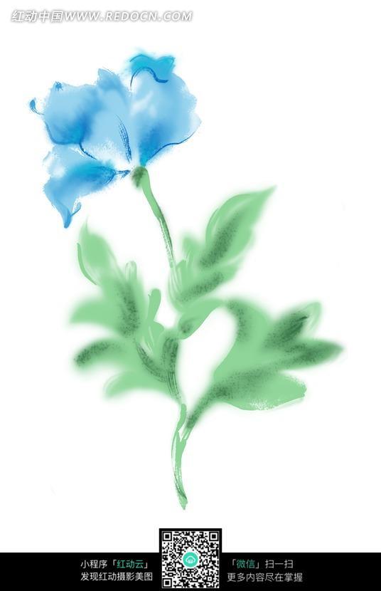手绘蓝色花朵与叶子图片