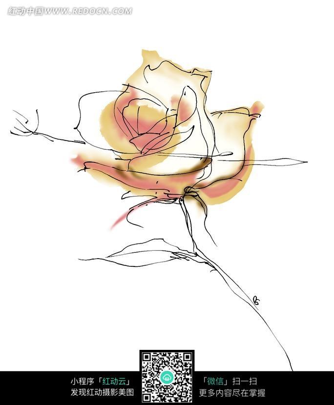 褐色手绘风格的玫瑰