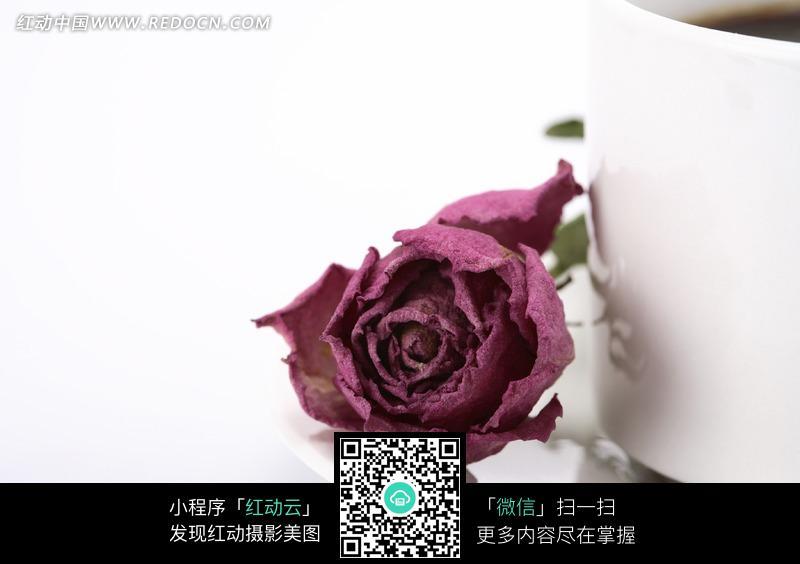 杯子旁的玫瑰花图片
