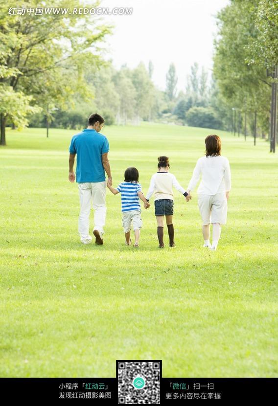 四口之家林间草地漫步背影图片