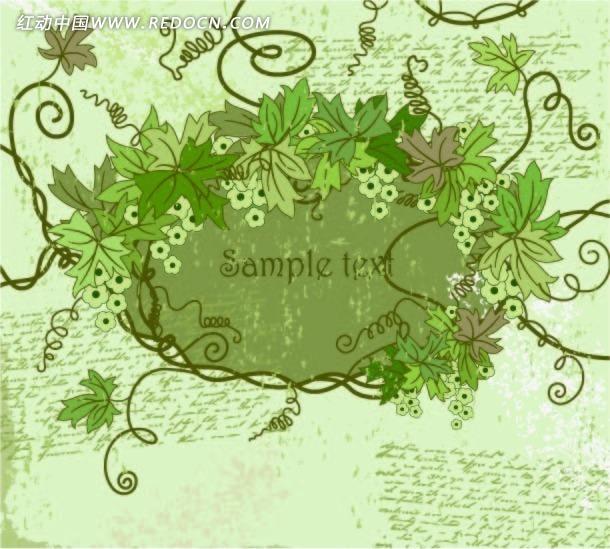 绿色葡萄叶子和藤蔓