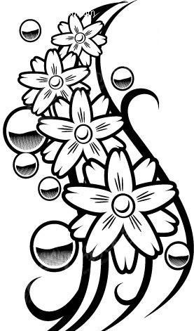 黑白线描花卉素材 eps