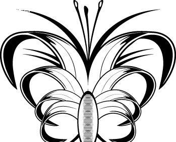 蝴蝶手绘黑白练习