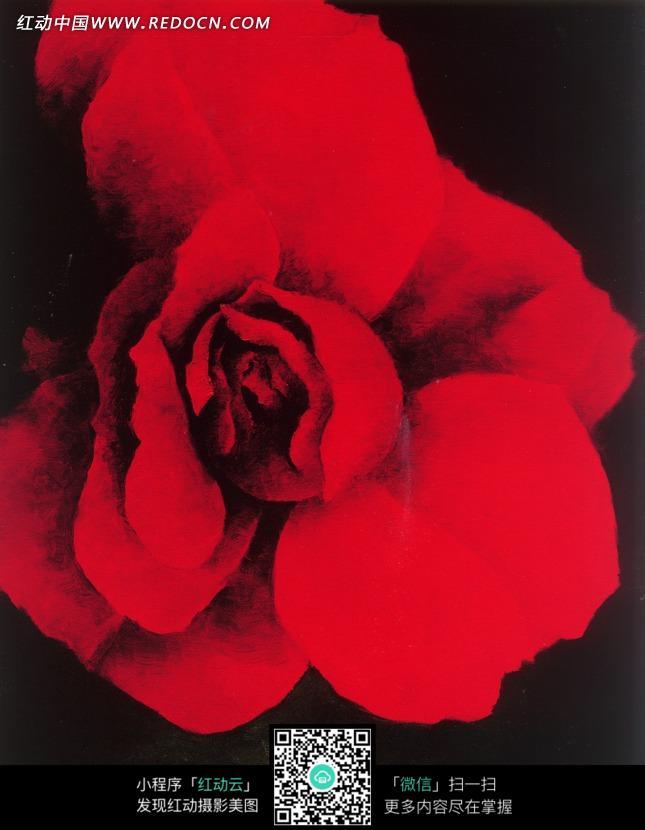 手绘精美红色花朵