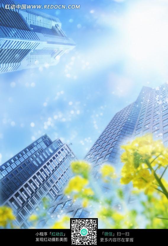 蓝天下的高楼大厦仰视图图片