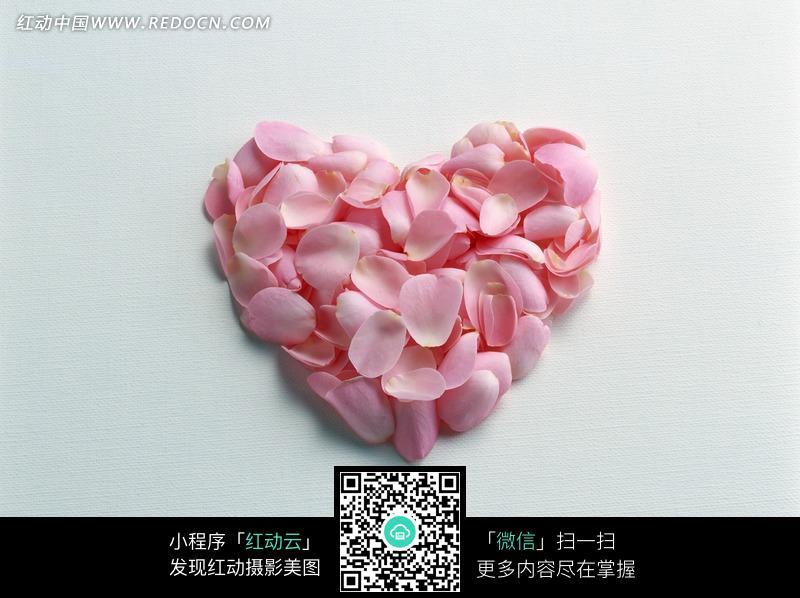 心形粉红花瓣