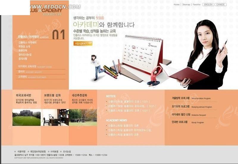 骑姐姐免费成人网站_成人教育网站模板psd素材免费下载_红动网