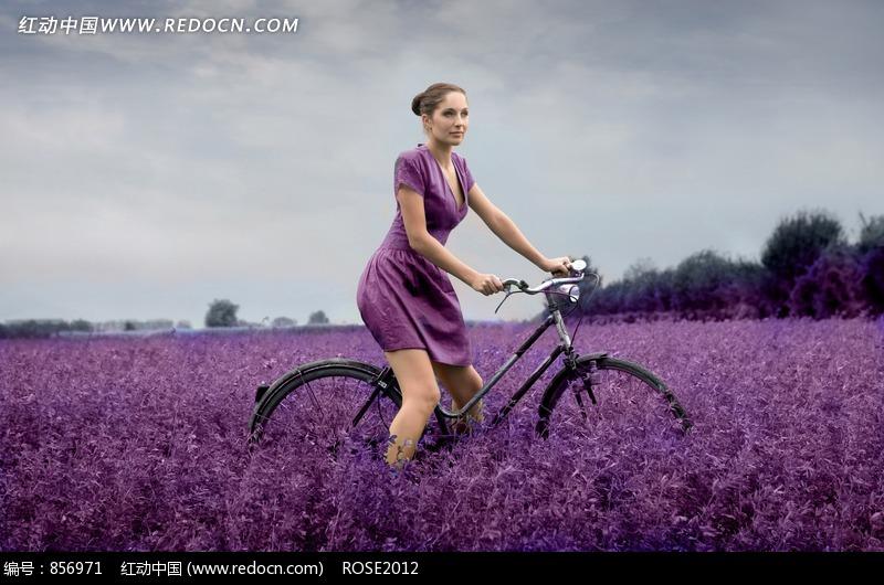 車的紫衣美女圖片