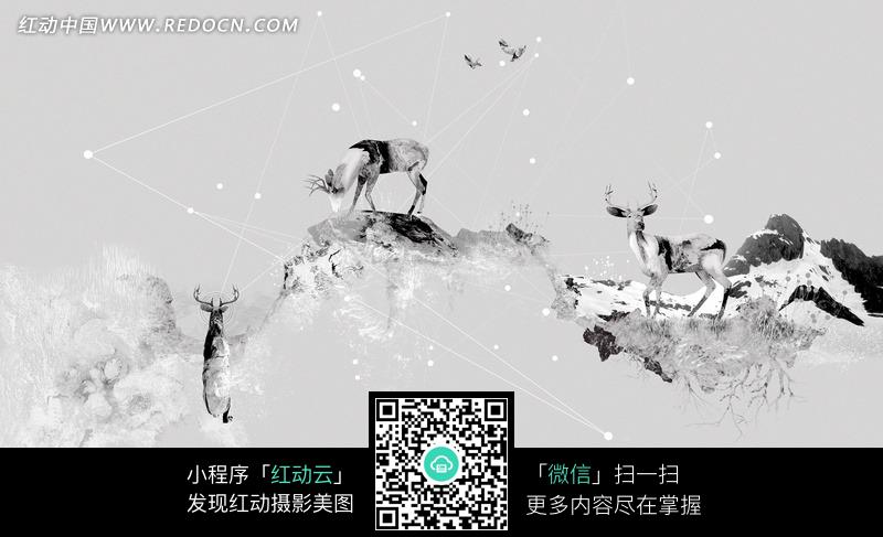 黑白色雪山上的麋鹿图片