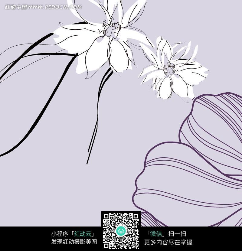手绘花朵插画素材